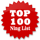 Ning Networks Top 100